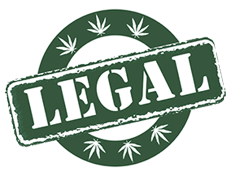 the advocacy to legalize cannabis in australia States that may legalize recreational marijuana by  the president of the cannabis advocacy network,  what's stopping australia from legalizing cannabis.